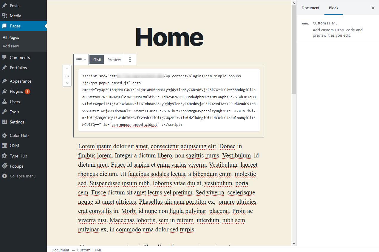 Widget Script Pasting